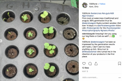 (2/2) I've been so impressed by the germination results with Blue Gold™!