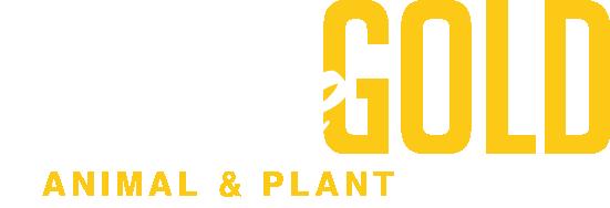 bg-logo-retina